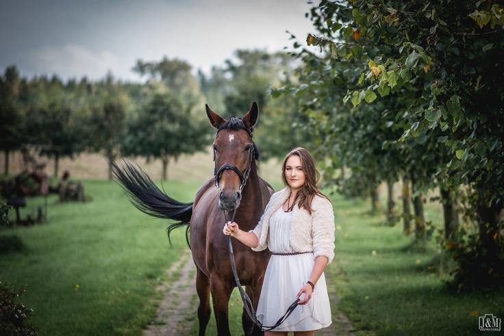 J&M_Horse_002p