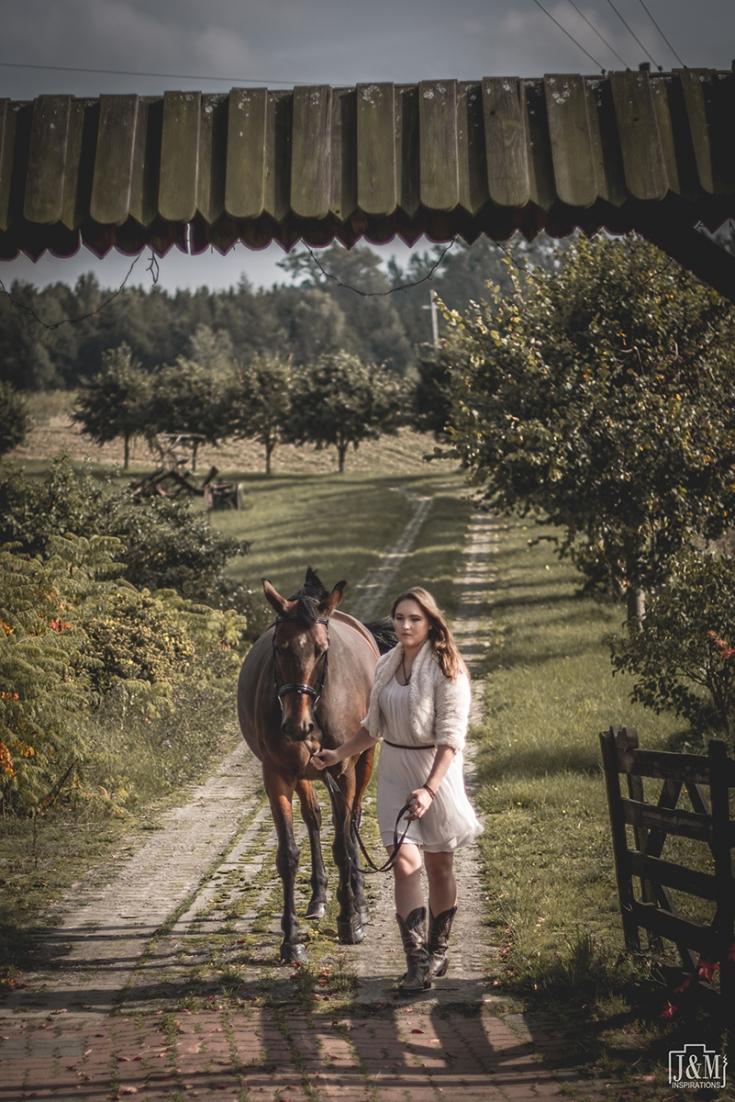J&M_Horse_006p