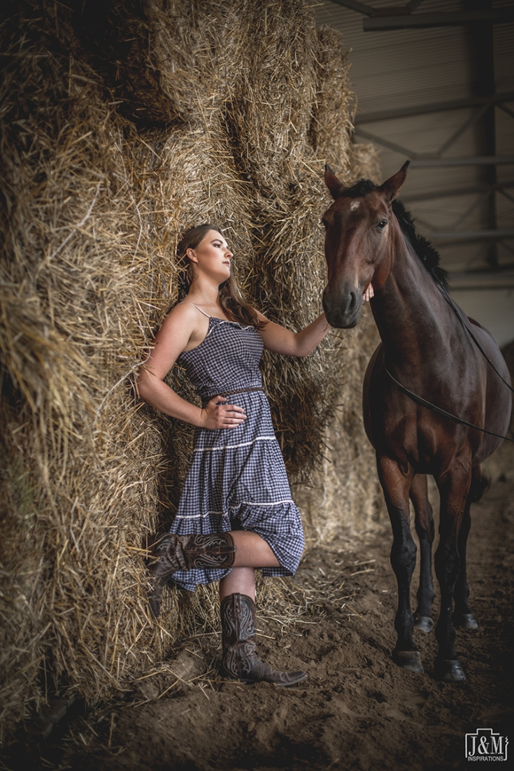 J&M_Horse_007p